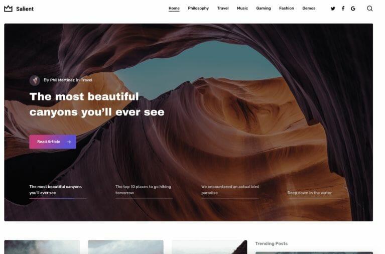 Salient Theme Blog